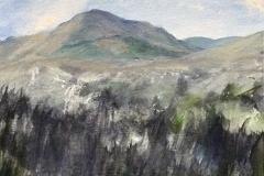 new-mountains-web